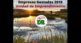Empresas Gestadas 2019 - Unidad de Emprendimiento