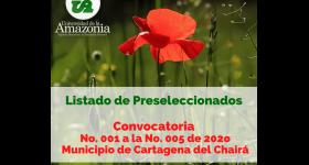 Listado Preseleccionados - Convocatoria No. 001 a la No. 005 Municipio de de Cartagena del Chairá